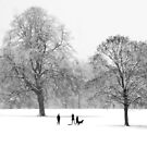 Silhouettes in the Snow by KUJO-Photo