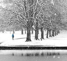 Winter Blues by KUJO-Photo