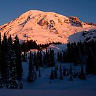MT Rainer at Sunrise by mcdesign