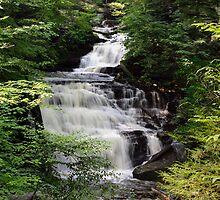 Ricketts Glen's Cascading Mohican Falls on Kitchen Creek by Gene Walls