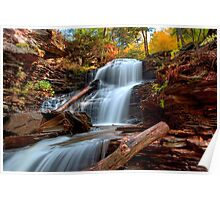 Shawnee Falls Under Fall's Colors Poster
