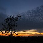 Sky scape by MarianBendeth
