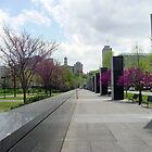Bicentennial Mall - Spring bloom by jeffrey freeman