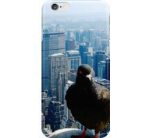Birds Eye View of Manhattan iPhone Case/Skin
