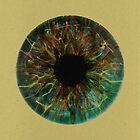 Antler iris by AndersHolmDK