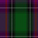 00150 New Hampshire District Tartan Fabric Print Iphone Case by Detnecs2013