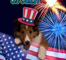 Fourth Of July Sheltie Puppy by jkartlife