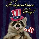 Independence Day Raccoon by jkartlife