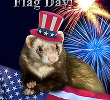 Flag Day Ferret by jkartlife