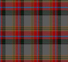 00172 Berrwick upon Tweed District Tartan Fabric Print Iphone Case by Detnecs2013