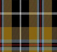 00173 Cornish National Tartan Fabric Print Iphone Case by Detnecs2013