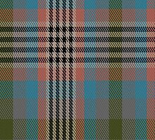 00176 Somerset District Tartan Fabric Print Iphone Case by Detnecs2013