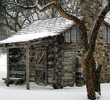 Winter Retreat © by Dawn M. Becker