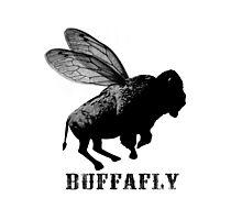 BuffaFly Buffalo Fly Photographic Print