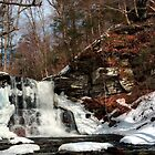 Winter View of Sheldon Reynolds Falls by Gene Walls