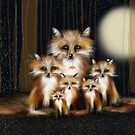 Fox Family by Karin  Taylor