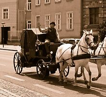 the coachman by dirk hinz