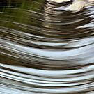 Water Curves by Malcolm Katon