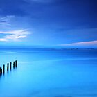 Into the Blue by Arfan Habib