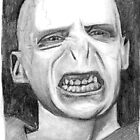Lord Voldemort by stoophilpott