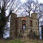 Dinton Castle Folly Aylesbury West Buckinghamshire UK by Jacqueline Longhurst