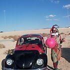 Ladybird Space Hopper Fool by jollykangaroo