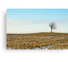 Tree on a corn field! Canvas Print