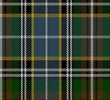 00183 Clodagh/Cork District Tartan Fabric Print Iphone Case by Detnecs2013