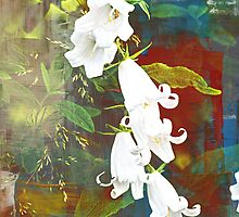 White Bells by Maj-Britt Simble