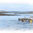 Ballydorn..Strangford Lough by oulgundog