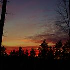 Vermont Sunset Silhouette by Mistral Hill  Photography