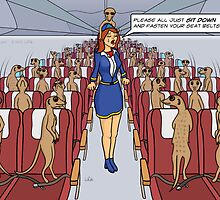 Meerkats on a Plane by Thingsesque