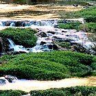Havasu Falls River by Russell Pedri