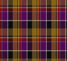 00197 Culloden District Tartan Fabric Print Iphone Case by Detnecs2013