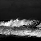 Swell ... by Erin Davis