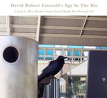 Spy In The Bin Three  by Robert Phillips