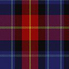 00208 Fife District Tartan Fabric Print Iphone Case by Detnecs2013