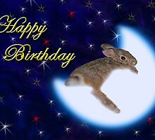 Birthday Bunny Rabbit by jkartlife