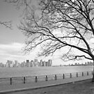 View of Manhattan by gleadston