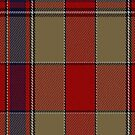 00241 K-9 Tartan Fabric Print Iphone Case by Detnecs2013