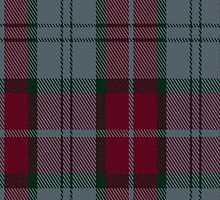 00242 Rob Roy Tartan Fabric Print Iphone Case by Detnecs2013