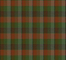 00247 Braveheart Tartan Fabric Print Iphone Case by Detnecs2013