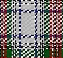 00249 Braveheart Warrior Dress Tartan Fabric Print Iphone Case by Detnecs2013