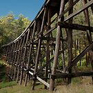 Noojee Trestle Bridge by DavidsArt