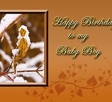 Birthday To My Baby Boy Leaf by jkartlife