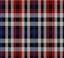 00274 Border Bell Tartan Fabric Print Iphone Case by Detnecs2013