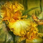 Iris - Goddess Of Summer by Carol  Cavalaris