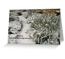 DAFFODILS IN THE SNOW/BIBLE VERSE Greeting Card