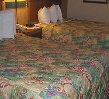 quality suites convention walt disney world by adimark