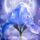 Iris - Goddess Of Moonlight by Carol  Cavalaris